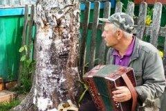 Аляксандр Іванавіч Мінчанка